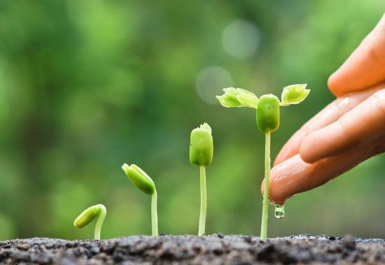 土壤逐步恶化会带来哪些危害?