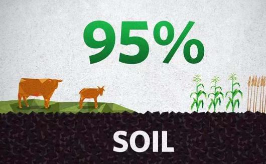 请善待土壤,善待土壤就等于善待自己的生命!