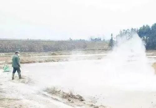 用生石灰解决土壤酸化、防治土传病害问题!