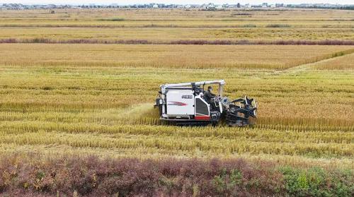 2021年耕地保护新打算