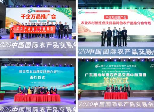 第十九届农交会移师深圳 迎接农业发展新机遇