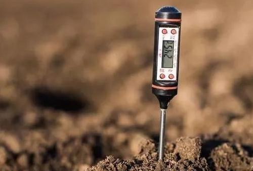 土壤改良的3大要素,也是影响土壤作物健康的3大要素,务必要牢记