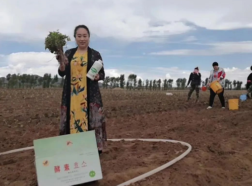 中国工程院院士:被化肥农药毁掉的土壤,触目惊心!