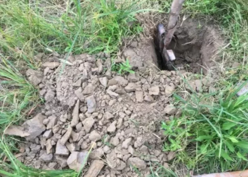土壤板结总烂根,如何让板结的土壤疏松透气?